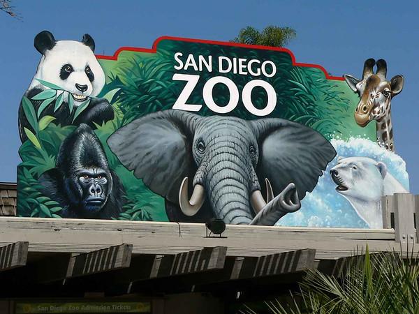 San Diego Zoo 6/07